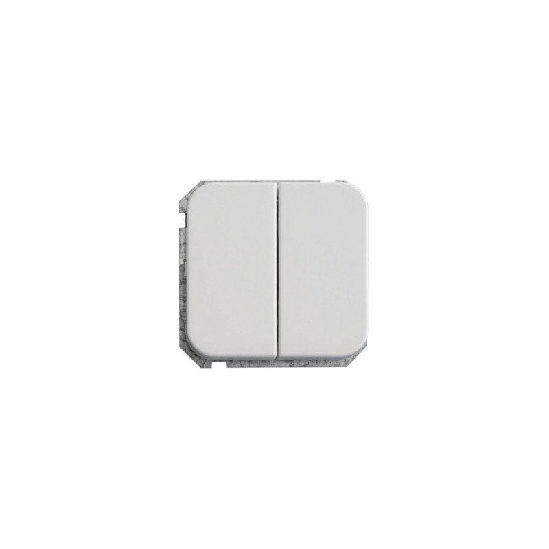 Doble conmutador serie Ceese 1000